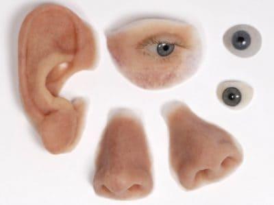 prothesses oren ogen neus